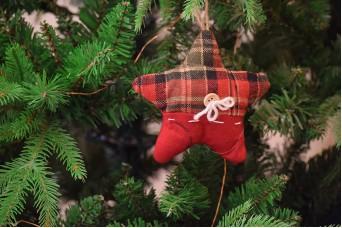 Χριστουγεννιάτικο Στολίδι Αστέρι Μαξιλαράκι Καρώ 14cm CD2222