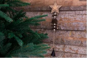 Χριστουγεννιάτικο Κρεμαστό Διακοσμητικό Αστέρι-Κουκουνάρι CD7755S