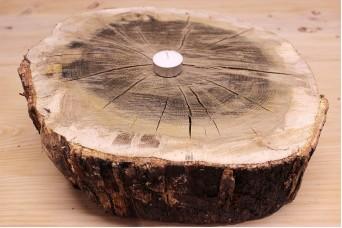 Φέτα Φυσικό Ξύλο Φ50cm 26170