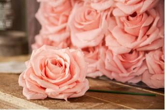 12τεμ Τριαντάφυλλα 15cm Diamond Rose AFR-A15637-CIP