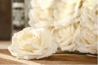 12τεμ Τριαντάφυλλα 15cm Diamond Rose AFR-A15637-IVO