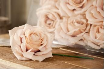 12τεμ Τριαντάφυλλα 15cm Diamond Rose AFR-A15637-VAN