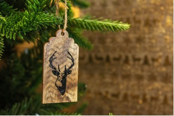 Χριστουγεννιάτικο Ξύλινο Καρτελάκι Τάρανδος 7cm 2τεμ CD19-3914-1