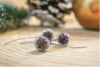 Παγωμένα Berries Μπορντώ 400τεμ CD19-5700