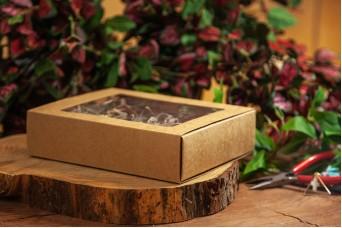 Χάρτινο Κουτί Craft με Διαφάνεια 19.5x15.5x4.7cm PI-9599-19