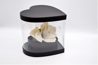 Flower Box Καρδιά PIF-W9883